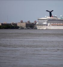 For Carnival, 'Death on the High Seas Act' Protects the Bottom Line