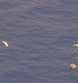 Video: Pararescue Jumpers Save Master of Fishing Vessel Off Hawaii