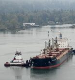 Bulk Carrier Grounds After Losing Propulsion in the Columbia River