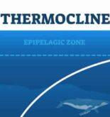 Understanding Thermoclines In Ocean Waters