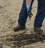 Delaware's Mystery Oil Spill Remains a Mystery