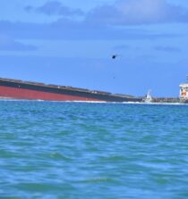 Mauritians Told to Prepare for 'Worst Case' Oil Spill