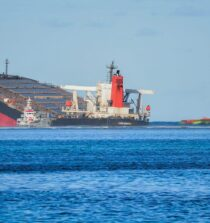 Wakashio Grounding and Oil Spill: Was the Mauritian Government Unprepared?