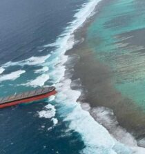 Mauritius Environmental Minister: No Oil Spill from Grounded Wakashio