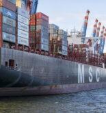 msc ship in port