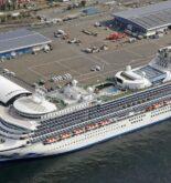 Cruise Stocks Plunge